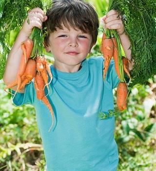 Làm gì để bé thích ăn rau? lam gi de be thich an rau?